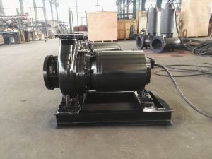 Horizontal Dry Installation Sewage Pump pictures & photos