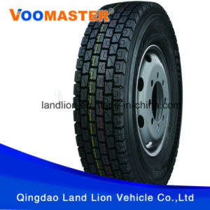 Factory Professional Supply Kinds Model Truck Tire 10.00r20, 11.00r20 pictures & photos