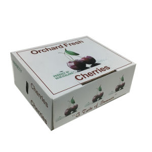 Three Layers Fruit Packing Box with High Quality pictures & photos
