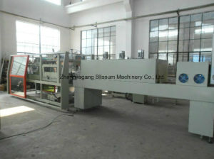 Full-Automatic Wsp-10 Film Shrink Wrapping Packaging Machine pictures & photos