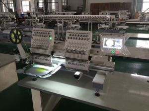 Swf Similar China Multi-Functions Double Head Computer Embroidery Machine with Low Cost pictures & photos