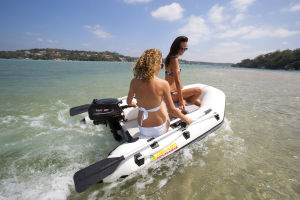 3.6HP 2 Stroke Outboard pictures & photos