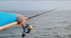 2m Mh Action High Carbon Fishing Rod Gun Reel Seat and Spinning Reel Seat Lure Rod pictures & photos
