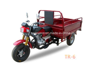 150cc Wuyang Type Cargo Tricycle (TR-6) pictures & photos