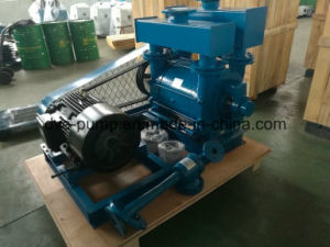 Water Ring Vacuum Freeze Drying Pump pictures & photos