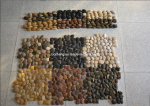 Stone Pebble Mosaic with Net for Paving pictures & photos