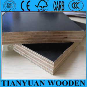 Film Faced Plywood Shuttering Plywood 18mm pictures & photos