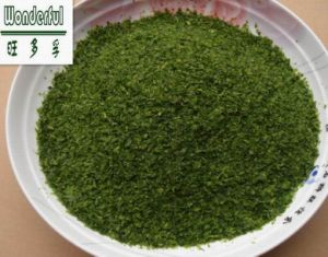 Food Ingrediant Coloring/Seasoning/Flavoring Dried Green Seaweed Aonori/Aosa Powder/Flakes