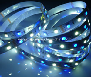 SMD5050 RGB+White 120 LEDs/M LED Flexible Light IP68 Avilable for Outdoor Application pictures & photos