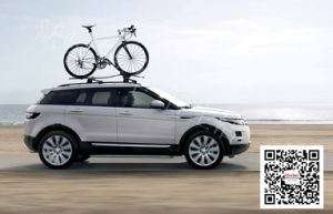 Range Rover Sports Auto Accessories Power Side Step pictures & photos