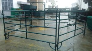 3m Wide Steel Horse Paddock Panels