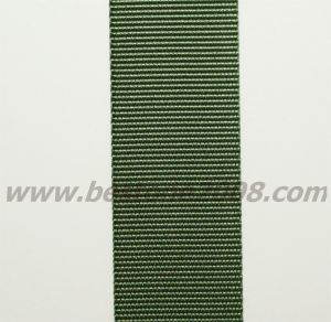 Factory Manufactured Nylon Webbing Ribbon#1501-03b pictures & photos