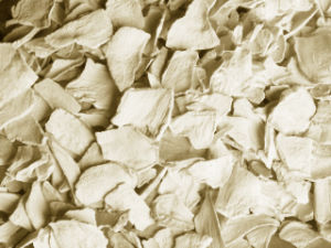 Dried Horseradish Flakes