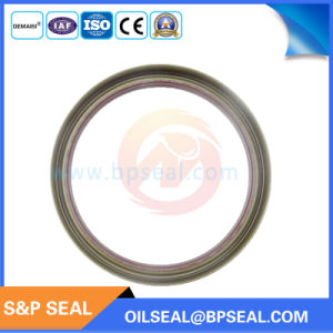 Labyrinth Style Cassete Oil Seal for Trucks and Agricultural Machines pictures & photos