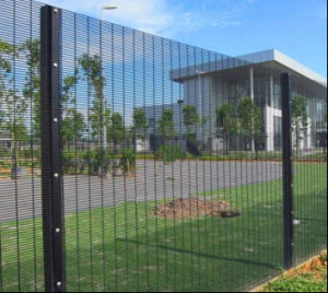 Australian Secure Max 358 Security Fencing/Anti-Climb Security Fence pictures & photos