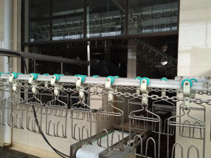 Convyer Machine/Slaughtering Equipment/Poultry Slaughter Equipment pictures & photos