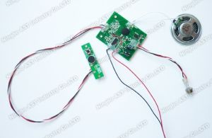 PIR Sensor Sound Chip, Recordable Voice Module (S-3025) pictures & photos