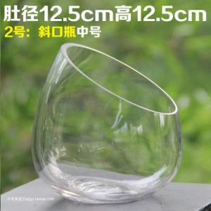 Creative Glass Bottle Flower Microlandschaft Art for Decoration pictures & photos