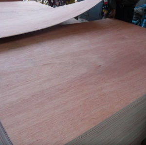 All Kinds of Veneer Face Commercial Plywood for Construction/Decoration and Furniture pictures & photos