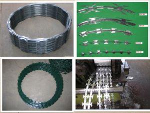 PVC Coated Glvanized Iron Razor Barbed Wire pictures & photos