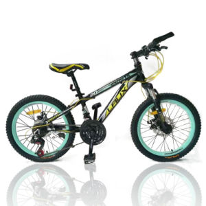 Variable Color OEM Carbon Steel Mountain Bike (MTB-028) pictures & photos