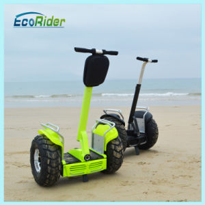 New Arrived Beach Cruiser Two Wheel Electric Bicycle pictures & photos