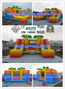 Inflatable Playground Bouncer Combo (MIC-893) pictures & photos