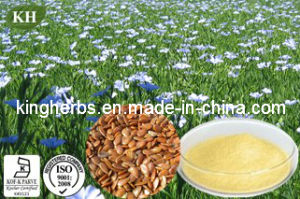 Natural Flaxseed Extract (SDG) /Flaxseed Ligans pictures & photos