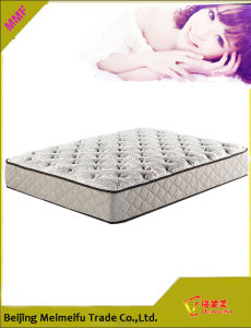 Innerspring / Coil Mattress Reviews