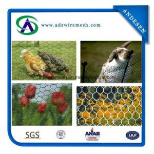 """1/4"""", 3/4"""" Chicken Wire Rabbit Wire Mesh Hexagonal Wire Mesh, Chicken Wire Mesh pictures & photos"""