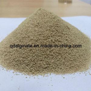 Best Quality Sodium Alginate for Textile