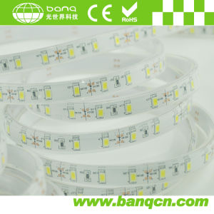 Most Bright SMD5630 LED Strips Waterproof for Outdoor Use (BQ-SE-Y30W-5630)