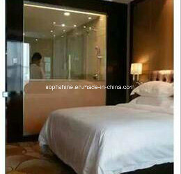 Insulated Glass for Toilet Partition with Honeycomb Blinds Motorized