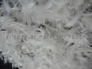 Duck Feather (2-4-6cm)
