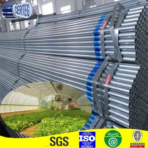 Hot Dipped Galvanized Steel Pipe Tubing Price for Greenhouse Structure pictures & photos