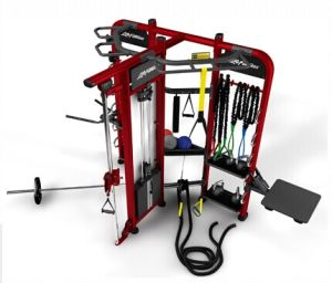 Crossfit Equipment/Crossfit Gym Equipment Synergy 360 for Sale Multi Stationtz-360t pictures & photos