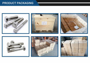 Factory Supply Reach Certificated Hexagon Head Bolt pictures & photos