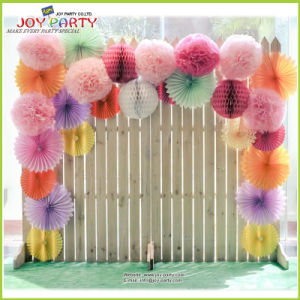 Tissue Paper POM Poms for Photo Background