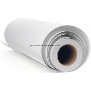 Offset Paper and CAD Plotter Paper for Cutting Room pictures & photos