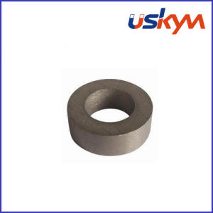 Sm2co17 Ring Rare Earth Magnets (R-002) pictures & photos