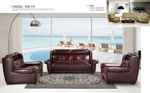 2016 The Newest Living Room Genuine Leather Sofa pictures & photos