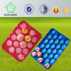 Large&Small Perforated Blister Packaging PP Plastic Fruit and Vegetable Display Trays pictures & photos