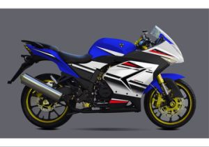 Gt200 Racing Motorcycle pictures & photos