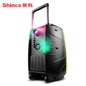 2017 China Multi-Functional Outdoor Karaoke Subwoofer Trolley Projection Speaker pictures & photos