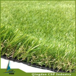 Landscaping Grass for Garden pictures & photos
