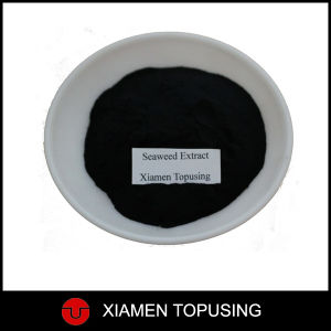 Seaweed Extract Powder Fertilizer pictures & photos