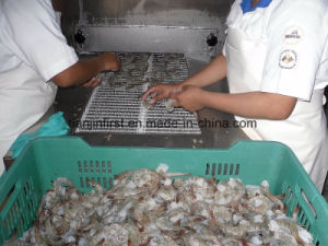 Seashell Fish Shrimp Ice Cream Quick Freezing Machine pictures & photos
