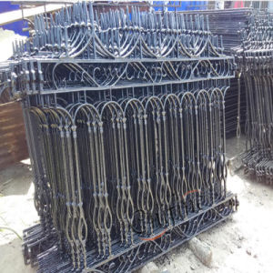 Cast Iron Ornament Gates and Fence pictures & photos