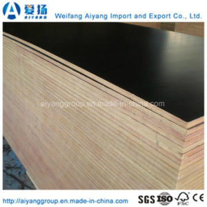 Custom Size Film Faced Plywood for Shuttering Concrete pictures & photos