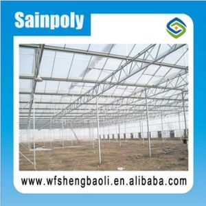 Factory Price Film Cover Agricultural Greenhouse pictures & photos